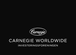 11_carnegie